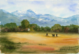 3 Cows Watercolor Painting by Roberta Burruss